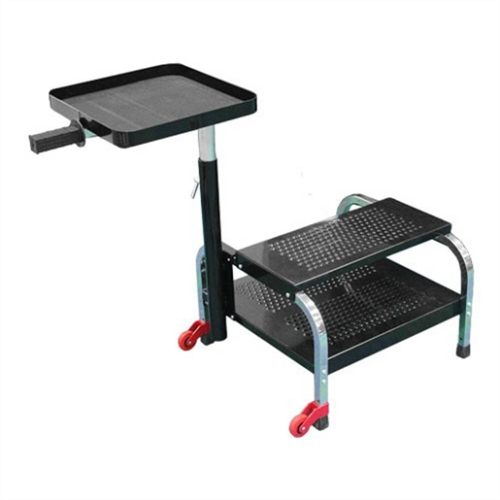 PORTABLE STEP WITH SHELF